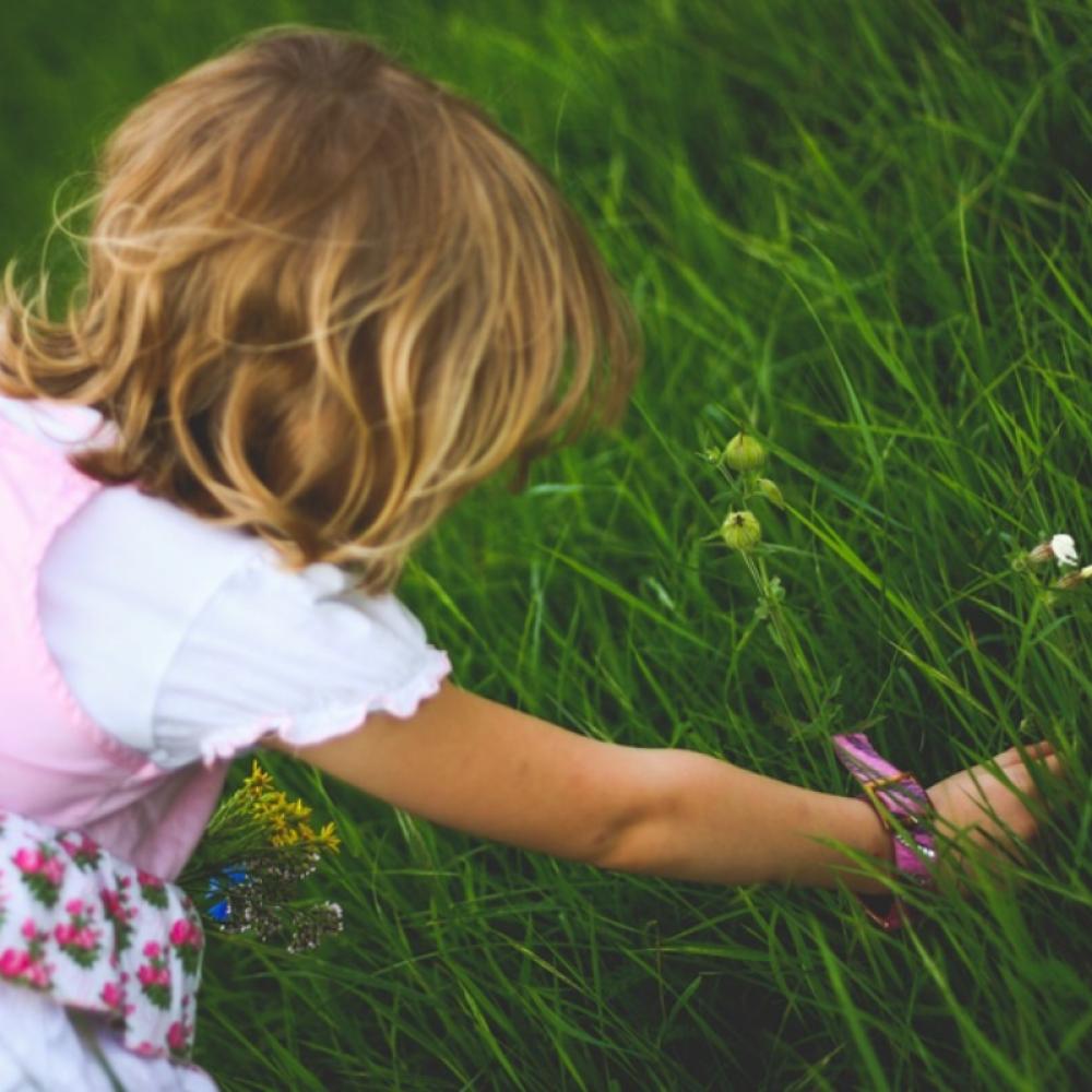 Benefits of A Sensory Garden