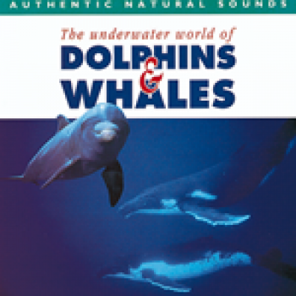 Dolphins & Whales CD